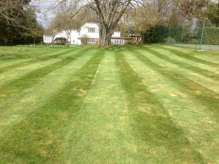 Large-grounds-mowing-Crawley-Horsham-Dorking-Redhill-Guildford-Epsom5