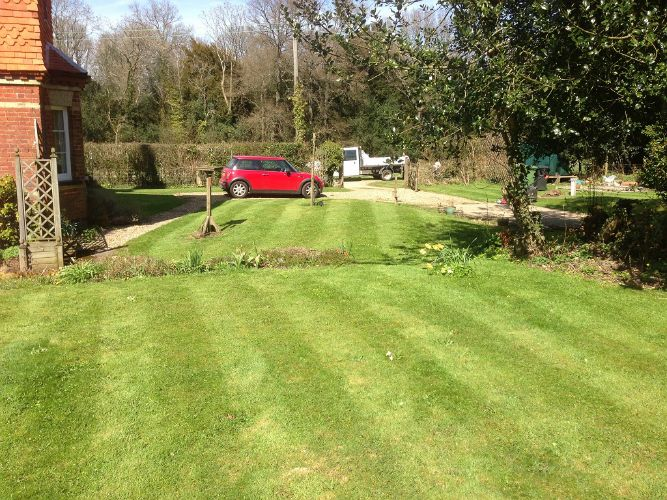 Lawn-mowing-Dorking8