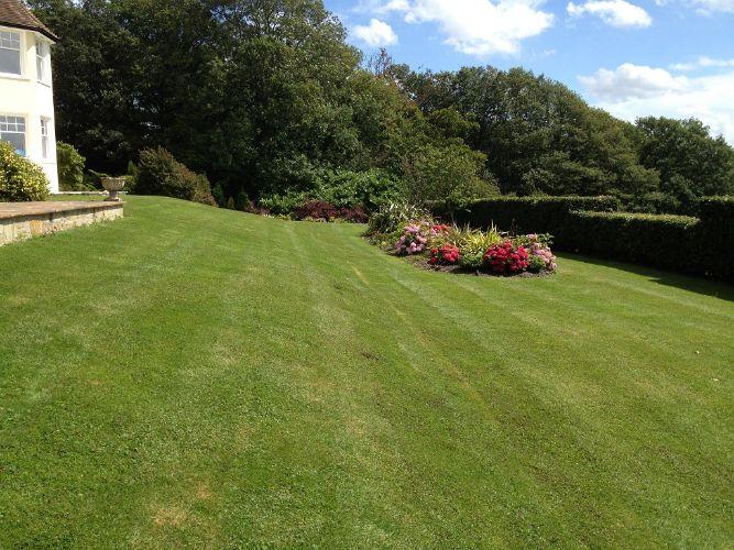 Lawn-mowing-Horsham2