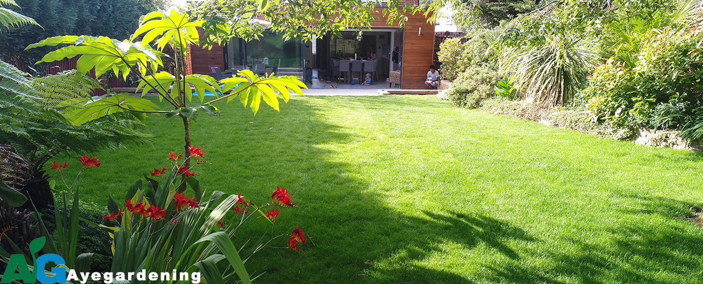 Turfing-Services