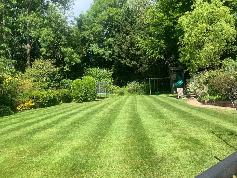 Regular grass cutting Reigate