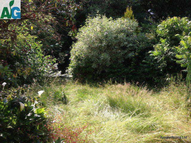 gardenclearancecrawley1