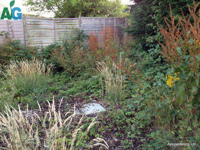 gardenclearancecrawleydowns1