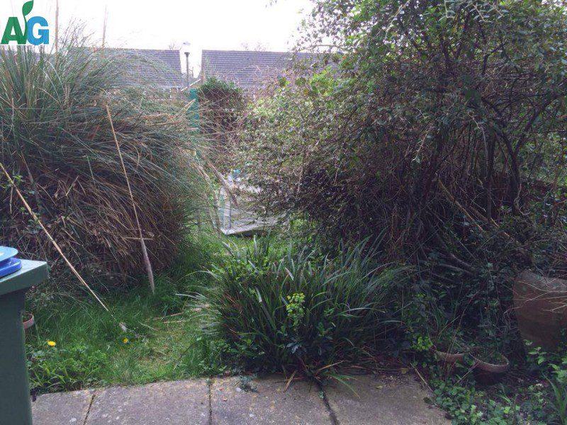 Horsham garden clearance